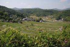 090614 三草山 (18).JPG